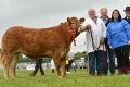 All Ireland Heifer Finals 2014